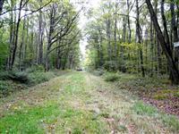 Randonnée automnale du côté de St-Lyé la Forêt