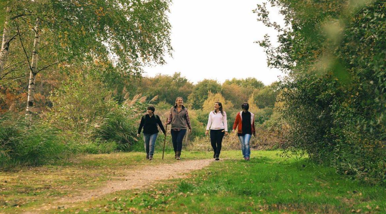Création, aménagement et promotion des itinéraires de promenade et de randonnée pédestre