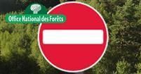 Forêts du Loiret : Interdiction de circulation