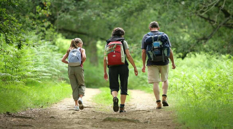 Les règles pour randonner en forêt après le déconfinement